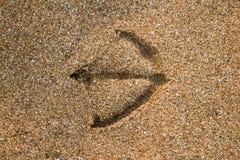 Τυπωμένη ύλη του γλάρου στην άμμο Στοκ Φωτογραφία