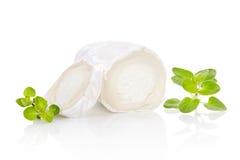 Τυρί αιγών με τα χορτάρια. στοκ εικόνες