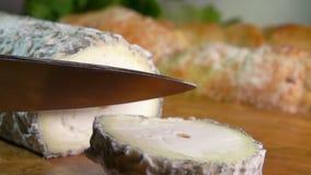 Τυρί αιγών με την μπλε-γκρίζα φόρμα απόθεμα βίντεο