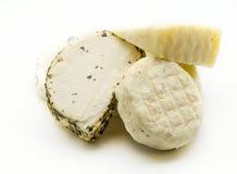 Τυρί αιγών Στοκ εικόνα με δικαίωμα ελεύθερης χρήσης