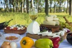 Τυρί αιγών Στοκ φωτογραφία με δικαίωμα ελεύθερης χρήσης