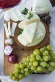 Τυρί αιγών Στοκ Εικόνα