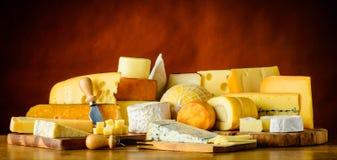 Τυρί ακόμα στη ζωή Στοκ φωτογραφία με δικαίωμα ελεύθερης χρήσης