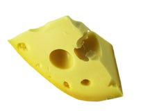 τυρί Ελβετός Στοκ εικόνες με δικαίωμα ελεύθερης χρήσης