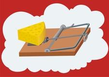 τυρί ελεύθερο Στοκ φωτογραφία με δικαίωμα ελεύθερης χρήσης