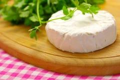 τυρί εύγευστο Στοκ Εικόνες