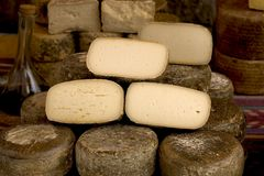 τυρί ισπανικά Στοκ εικόνα με δικαίωμα ελεύθερης χρήσης