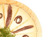 Τυρί και αντσούγιες Στοκ Εικόνες