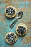 Τυρί και μπλε πίτες μούρων Στοκ Εικόνες