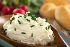 Τυρί κρέμας με τα φρέσκα κρεμμύδια Στοκ φωτογραφίες με δικαίωμα ελεύθερης χρήσης