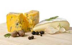 Τυρί με τη φόρμα με το καρύκευμα στοκ φωτογραφία με δικαίωμα ελεύθερης χρήσης