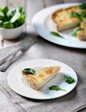 Τυρί ξινό με τα φύλλα σπανακιού Στοκ Εικόνες