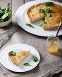 Τυρί ξινό με τα φύλλα σπανακιού Στοκ εικόνες με δικαίωμα ελεύθερης χρήσης