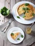 Τυρί ξινό με τα φύλλα σπανακιού Στοκ Εικόνα