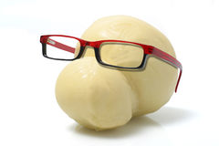 Τυρί που φορά τα γυαλιά στοκ εικόνες
