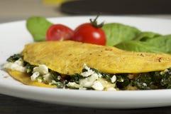 Τυρί προβάτων και ομελέτα σπανακιού στοκ εικόνα με δικαίωμα ελεύθερης χρήσης