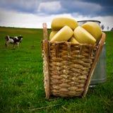 τυρί σκληρό στοκ φωτογραφία