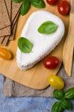 Τυρί στάρπης ανθρακόπλινθων στοκ εικόνα με δικαίωμα ελεύθερης χρήσης