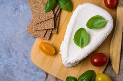 Τυρί στάρπης ανθρακόπλινθων στοκ φωτογραφία με δικαίωμα ελεύθερης χρήσης