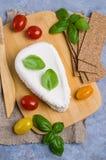 Τυρί στάρπης ανθρακόπλινθων στοκ φωτογραφίες