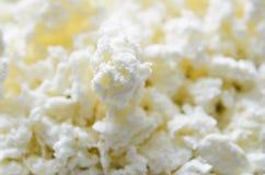 Τυρί στάρπης στοκ εικόνες