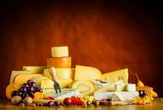 Τυρί στην φλέβα-ζωή Στοκ Φωτογραφία