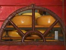 Τυρί στο οψοφυλάκιο σε ένα αγροτικό αγρόκτημα στοκ εικόνες