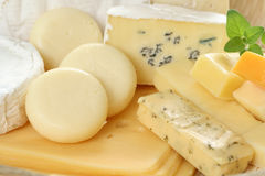 τυρί χαρτονιών στοκ εικόνα