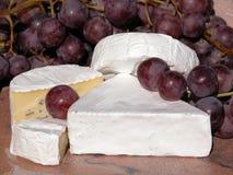 τυρί στοκ εικόνες με δικαίωμα ελεύθερης χρήσης