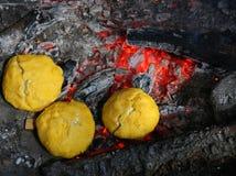 Τυρί Bulz στην πυρκαγιά Στοκ Εικόνες