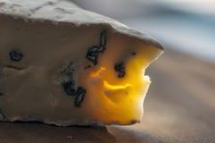 Τυρί Cambozola Στοκ φωτογραφίες με δικαίωμα ελεύθερης χρήσης