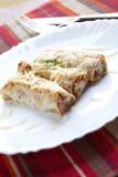τυρί cannellonis Στοκ Εικόνα