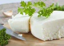 Τυρί Cotija. στοκ φωτογραφία με δικαίωμα ελεύθερης χρήσης