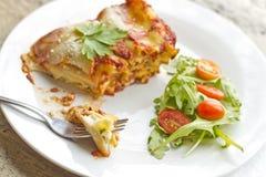 Τυρί Lasagna Στοκ φωτογραφία με δικαίωμα ελεύθερης χρήσης