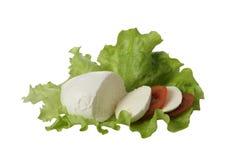 Τυρί Mozarella με την ντομάτα στο φύλλο σαλάτας Στοκ Εικόνες