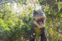 Τυραννόσαυροι Rex Στοκ εικόνα με δικαίωμα ελεύθερης χρήσης