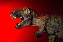 Τυραννόσαυρος με το φως σημείων στο κεφάλι και το κόκκινο φως Στοκ φωτογραφίες με δικαίωμα ελεύθερης χρήσης