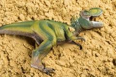 Τυραννόσαυρος στην άμμο Στοκ φωτογραφία με δικαίωμα ελεύθερης χρήσης