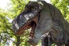 Τυραννόσαυρος Στοκ Εικόνες