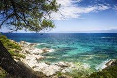 Τυρκουάζ θάλασσα κάτω από το πράσινο δέντρο Στοκ φωτογραφίες με δικαίωμα ελεύθερης χρήσης