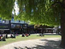 Τυρκουάζ κρύσταλλο προκυμαιών Queenstown - καθαρίστε το νερό την ηλιόλουστη ημέρα Στοκ φωτογραφίες με δικαίωμα ελεύθερης χρήσης