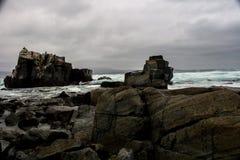 Τυρκουάζ νερά και σκοτεινές πέτρες το χειμώνα στοκ φωτογραφία