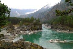 Τυρκουάζ ποταμός Katun το φθινόπωρο σε Altai Στοκ Φωτογραφίες