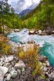 Τυρκουάζ, όμορφος, ποταμός βουνών Altai, Taiga άγριο δάσος τραγουδιού φύσης αγάπης αγριόγαλλων στοκ εικόνες με δικαίωμα ελεύθερης χρήσης
