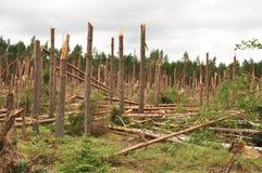Τυφώνας - επίδραση Στοκ Φωτογραφία