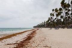 Τυφώνας στην παραλία στην ημέρα στοκ φωτογραφία με δικαίωμα ελεύθερης χρήσης