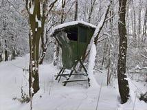 Τυφλό χιόνι ελαφιών Στοκ εικόνες με δικαίωμα ελεύθερης χρήσης