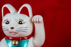 Τυχερή γάτα Στοκ εικόνες με δικαίωμα ελεύθερης χρήσης