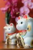 Τυχερή γάτα Japnese στοκ φωτογραφίες με δικαίωμα ελεύθερης χρήσης
