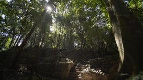 Των Μάγια καταστροφές σε Palenque, Chiapas, Μεξικό φιλμ μικρού μήκους